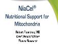 NiaCel and Mitochondria- Rountree 2016