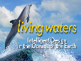 Living Waters Intelligent Design In The Oceans Of The Earth_Feature