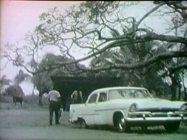 Footage of ʻOlu Konanui and Fred Punahoa in Kalapana, 1964