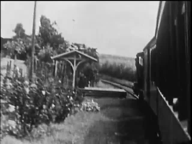 Hilo Railroad
