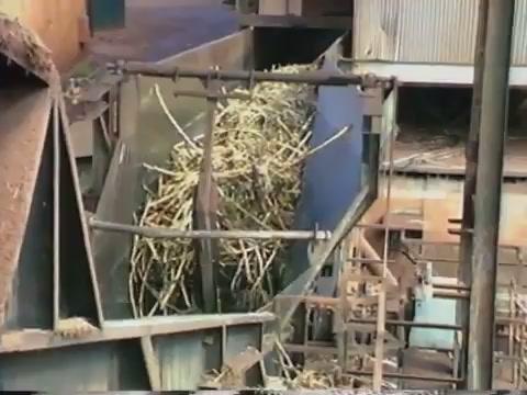 Waipahu Sugar Mill