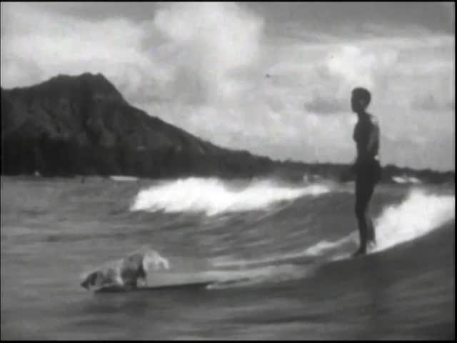 On the Waves at Waikiki