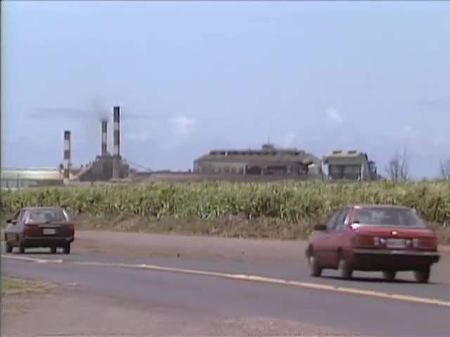 B-roll Maui plantation