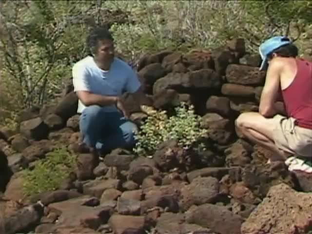 Interview with Sol Kahoʻohalahala; ʻIlima and Maʻo 2/20/88