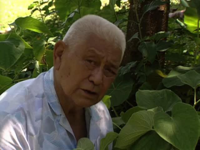 """""""Hawaiian Medicine Man"""" Kahuna lāʻau lapaʻau Henry Auwae tape 4"""