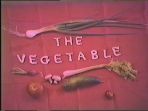 Vegetarian cooking demonstrations circa 1970s