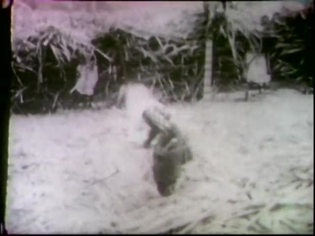 The Story of Ewa : A Cane Sugar Plantation 1926