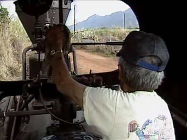 Eliseo Antonio with Wainiha and Paulo trains 3/10/87