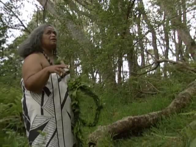 Interview and lei making with Kumu Hula Pualani Kanakaʻole-Kanahele; leaving the forest