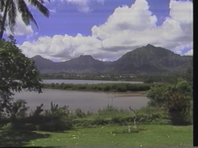 First Friday : The Unauthorized News : Archaeology - Heʻeia Marsh and Kāneʻohe (July 1988)