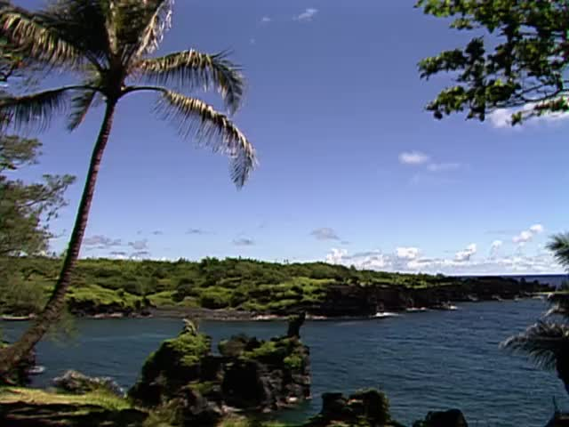 B-roll scenics of Maui