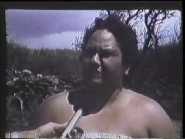Hawaii's Endangered Past : A Matter of Time