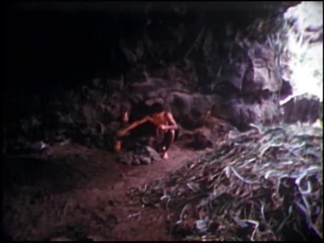 Hawaiian fishhooks : Tracing Polynesian immigration to Hawaii 1965
